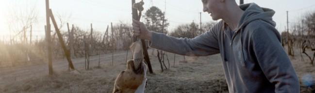 My Dog Killer – Die ewige Wiederkehr des Gleichen