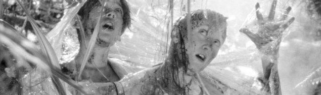 Zwei der Jungs sind in einem schleimigen Spinnennetz gefangen.