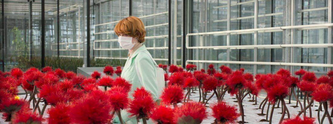 Alice steht in einem Labor voll roter Blumen.