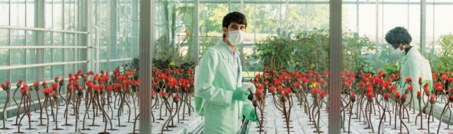 Assistent Chris steht im Labor, umgeben von Little Joe Blumen.